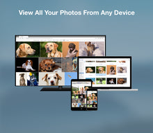 Load image into Gallery viewer, LAMU Portable Photo Organizer 500GB Rose Gold for Windows.