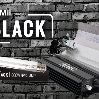How to Set Up the LUMii Black Kit