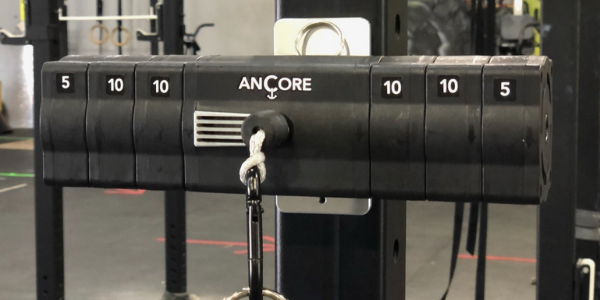ancore trainer on a squat rack in a gym with a rack mount