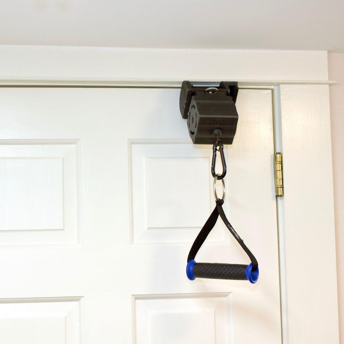 ancore trainer on a door mount