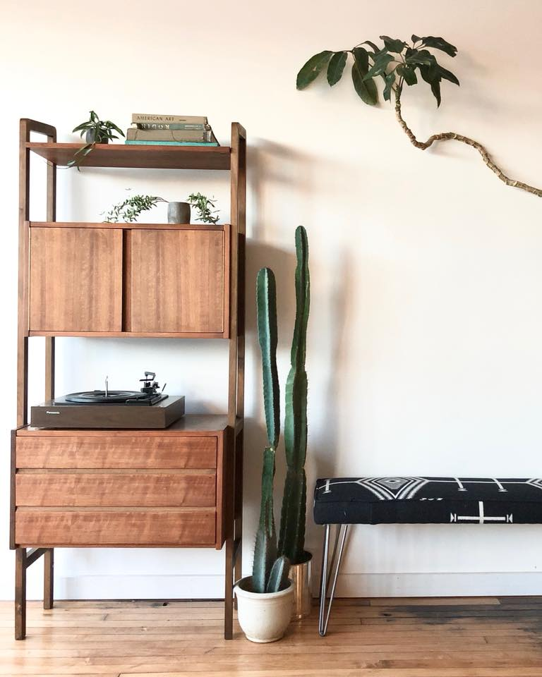 Mid-Century Walnut Shelf