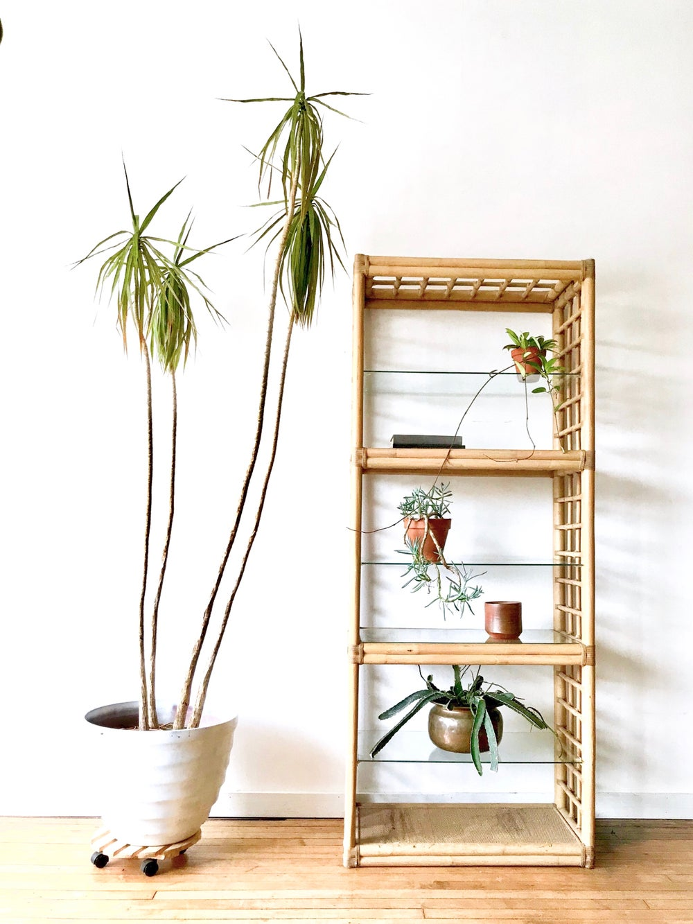 Large Vintage Rattan Shelving Unit