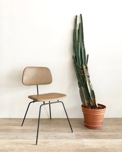Mid-Century Chair in Moss Leather