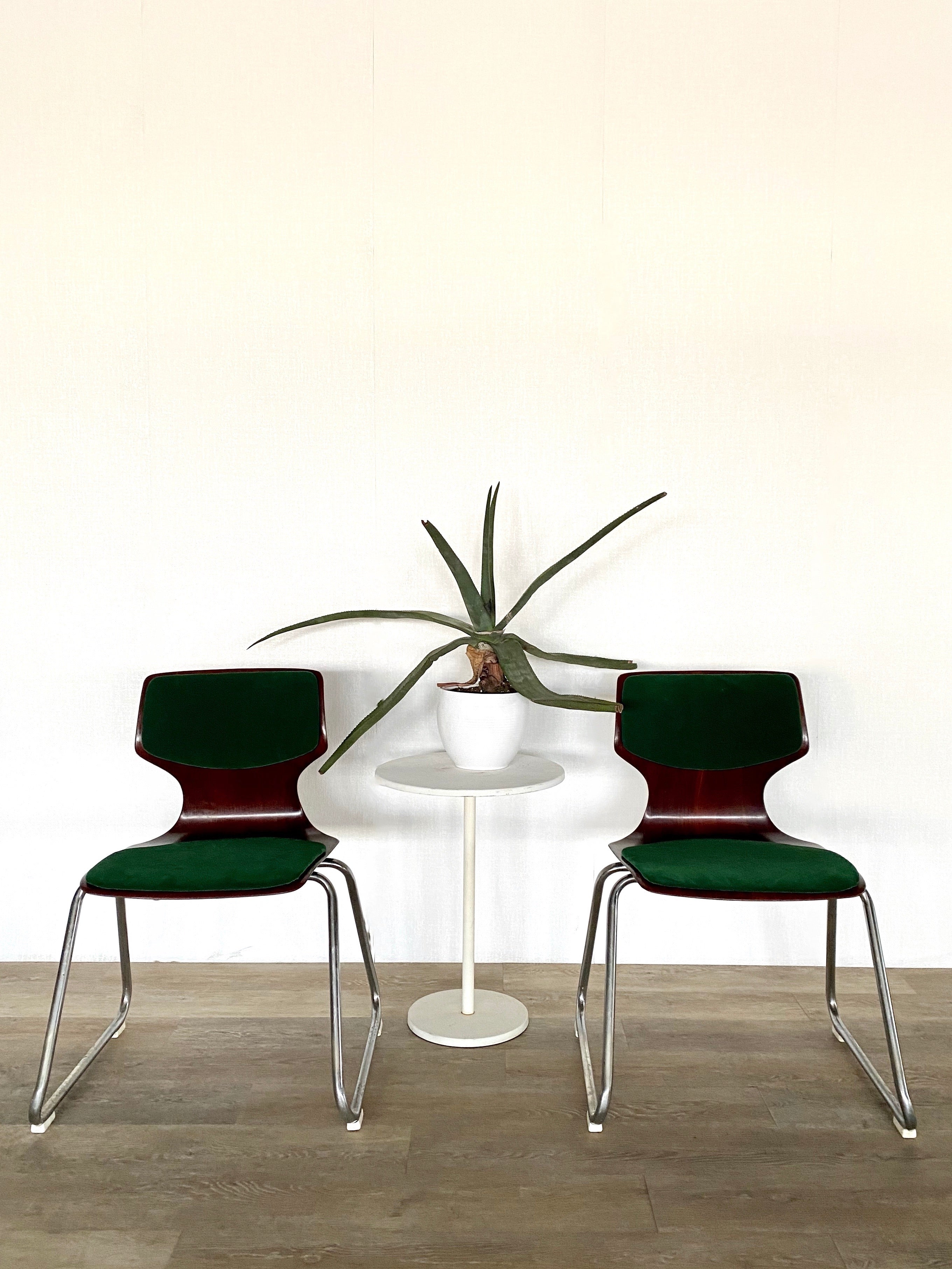 Pair of Vintage Bentwood Chairs with Fresh Green Velvet Upholstery
