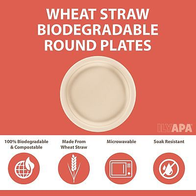 50 Biodegradable Disposable Plates - 6 Inch Compostable & Microwavable Wheat ...