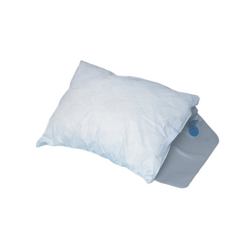 Briggs Water Pillow