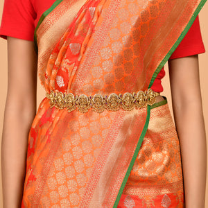 Flower motifs covering Banarasi Saree- DD-P1-S511