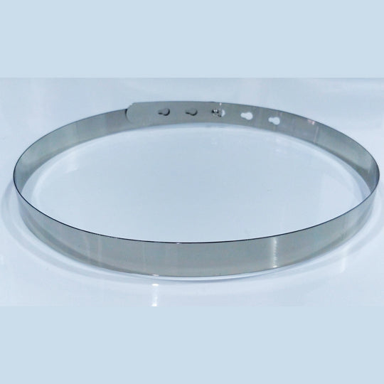 Silver Metallic Belt