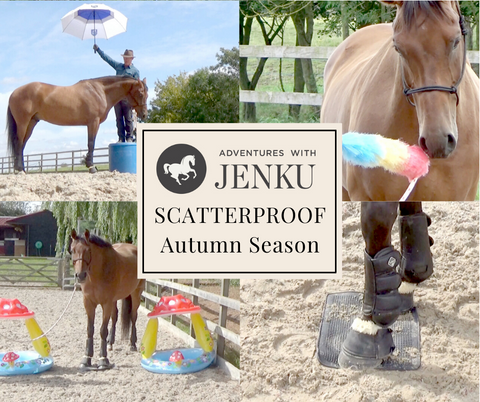 Scatterproof Autumn Season