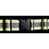 Halo Belt 2.0 Green & Red