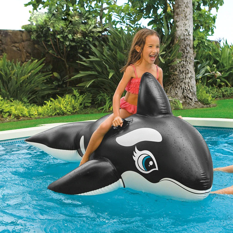 The Dolphin Pool Float for kids