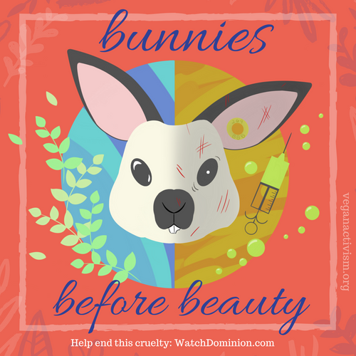 Bunnies Before Beauty