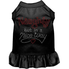 Load image into Gallery viewer, Rhinestone Naughty but in a nice way Dress - Petponia