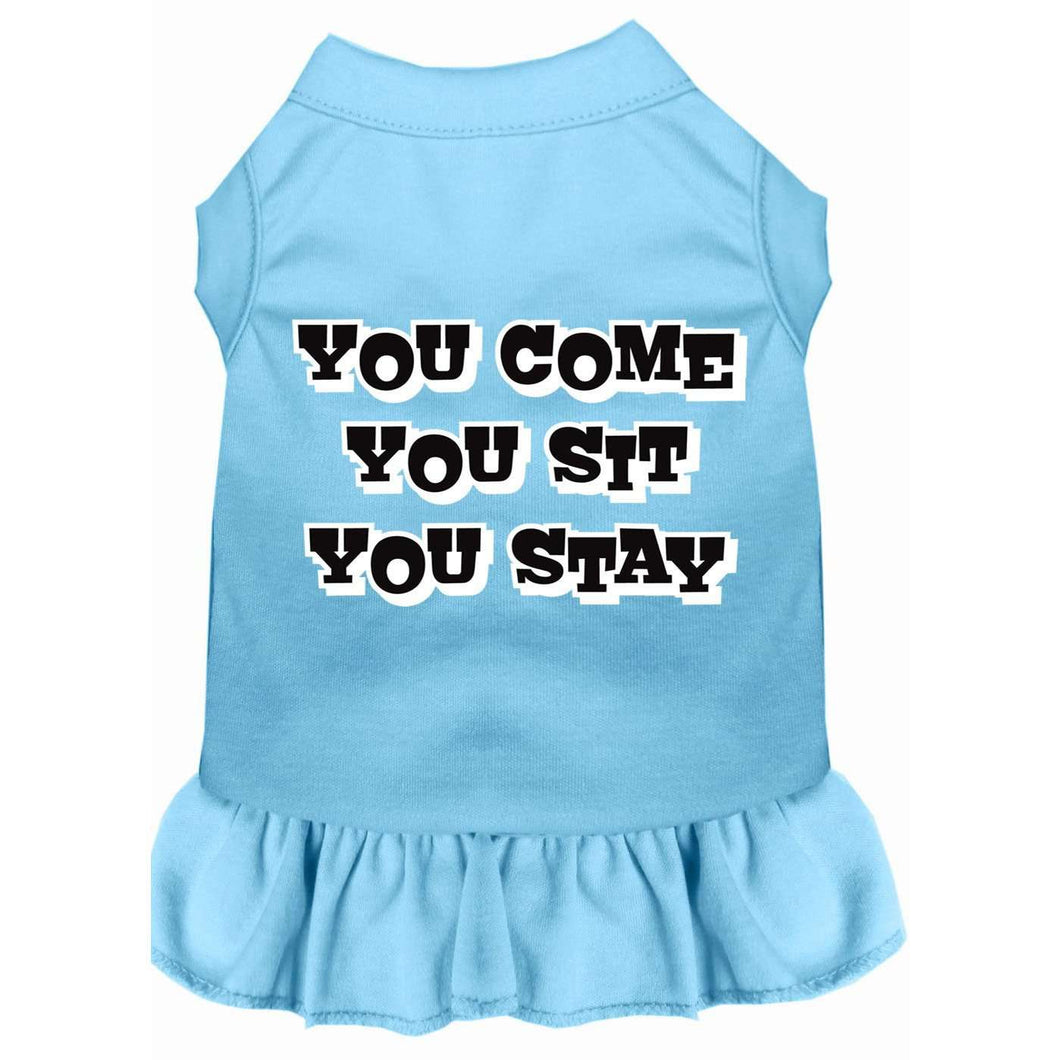 You Come, You Sit, You Stay Screen Print Dress - Petponia