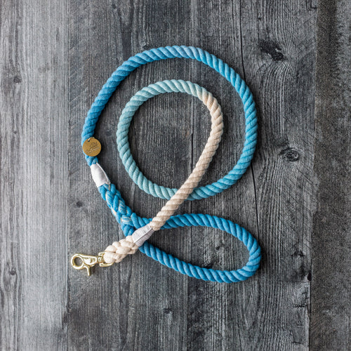 Rope Leash - Blue Ocean