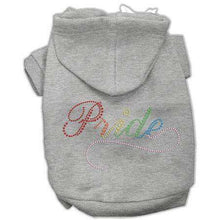 Load image into Gallery viewer, Rainbow Colored Pride Hoodies - Petponia