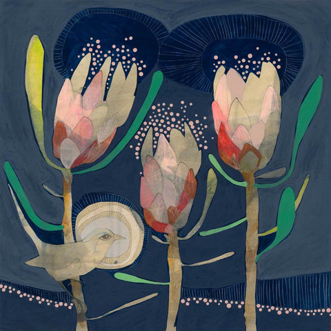Blue Wren and Protea print - Dana Kinter