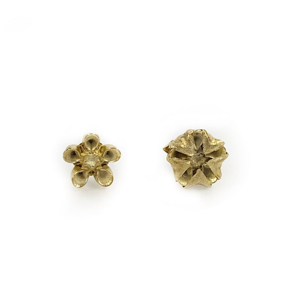 Milk weed studs gold plated - Anja Jagsch