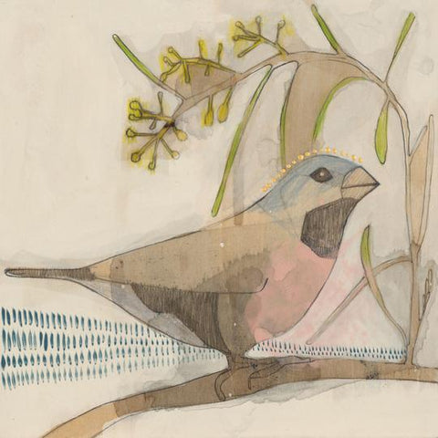 Black Throated Finch  Mini Print - Dana Kinter