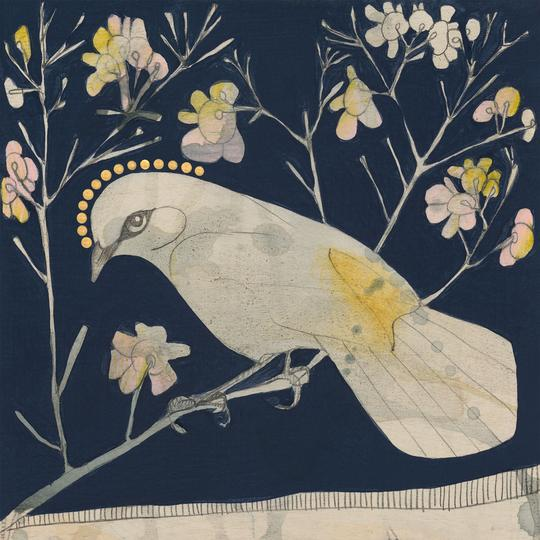 Buff Tailed Thornbill and Geraldton Wax Mini Print - Dana Kinter