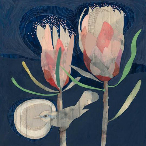 Little Thornbill and Protea print - Dana Kinter