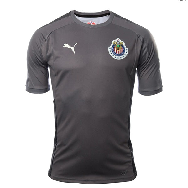 PUMA Men's Chivas 17/18 Home Goalkeeper Jersey  Gray