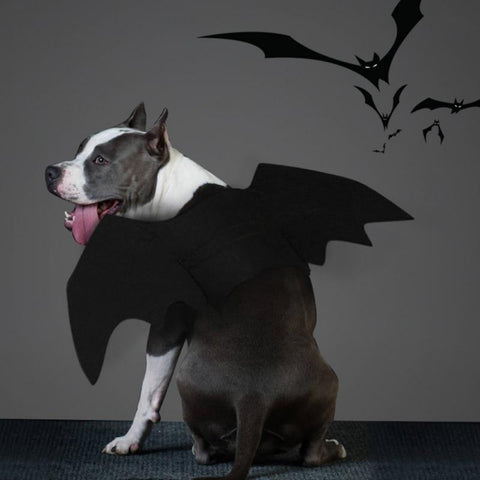 Bat Wings<br>[Costume for Dog/Cats] - My Best Paw