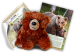 Grizzly Bear Adoption Kit - Plush Bundle