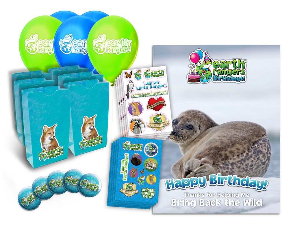 Ringed Seal Party Kit