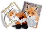 Ensemble d'adoption de renard roux – Peluche