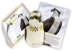 Osprey Adoption Kit - Plush Bundle