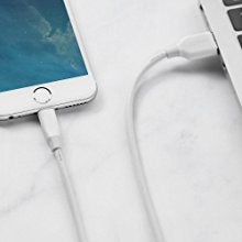 Powerline Lightning Cable