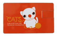 CATS Memory Card 2GB