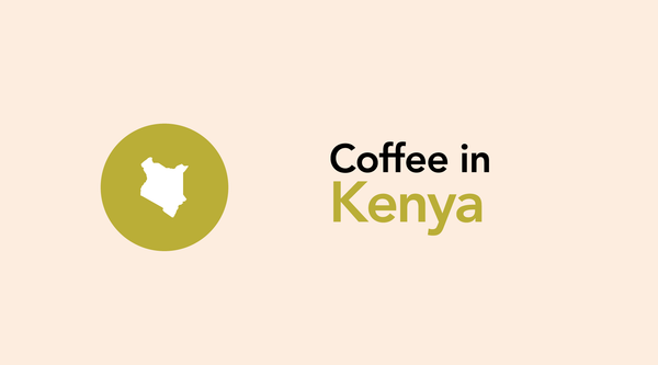 Kenyan Coffee, An Industry In A Country That Needs These Crops.