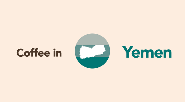 A Rare, But Amazing Birthplace? of Coffee, Yemen Coffee Origin Report