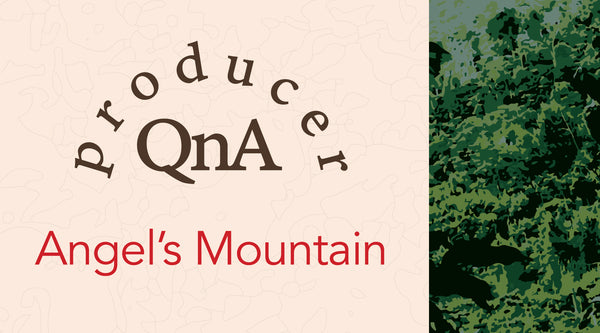Get to Know the Angel's Mountain Coffee Farm in El Salvador