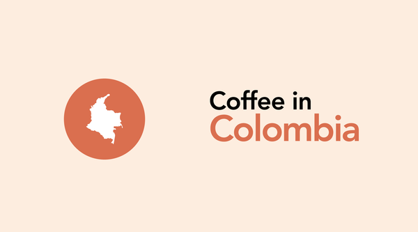 A History And Brief Overview of the Colombian Coffee Growing Region