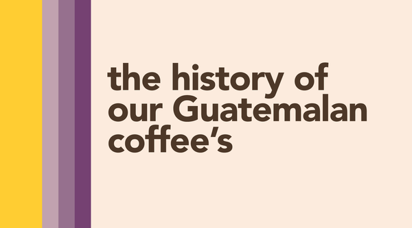 The History of Our Guatemalan Coffees