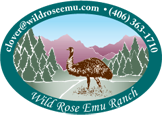 Wild Rose Emu Ranch