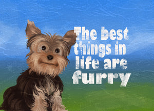 Wood Frames - Pet - Best Things In Life Are Furry