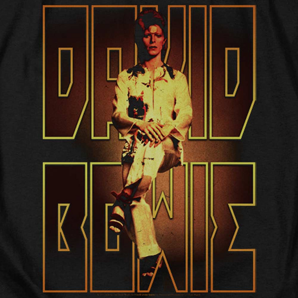 DAVID BOWIE Deluxe Sweatshirt, Perched
