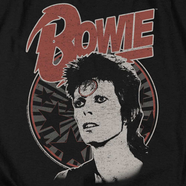 DAVID BOWIE Impressive Hoodie, Space Oddity