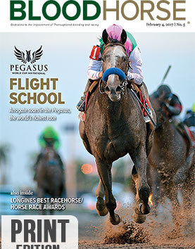 BloodHorse: February 4, 2017 print