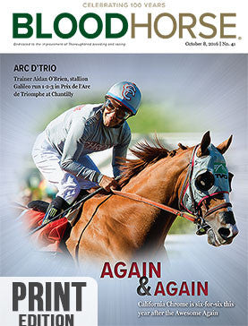 BloodHorse: October 8, 2016 print