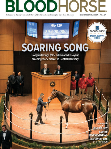 BloodHorse:  November 18, 2017 print