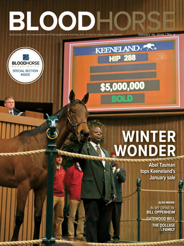 BloodHorse:  January 19, 2019 print
