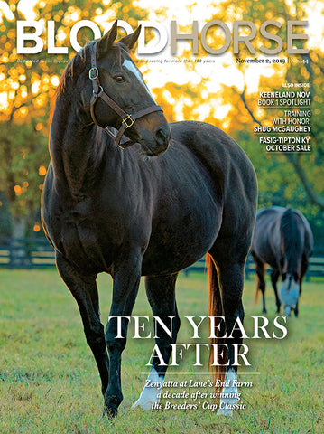 BloodHorse:  November 2, 2019 print