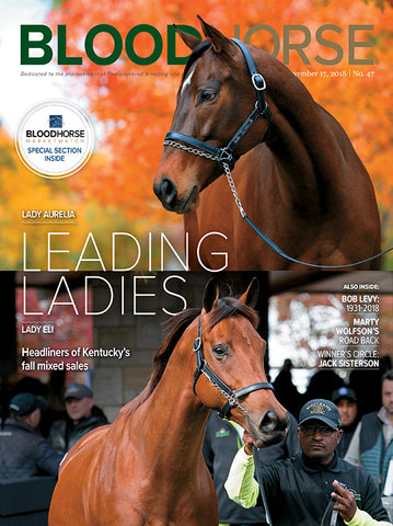 BloodHorse:  November 17, 2018 print