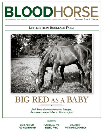 BloodHorse:  December 8, 2018 print