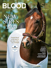 BloodHorse:  December 14, 2019 print